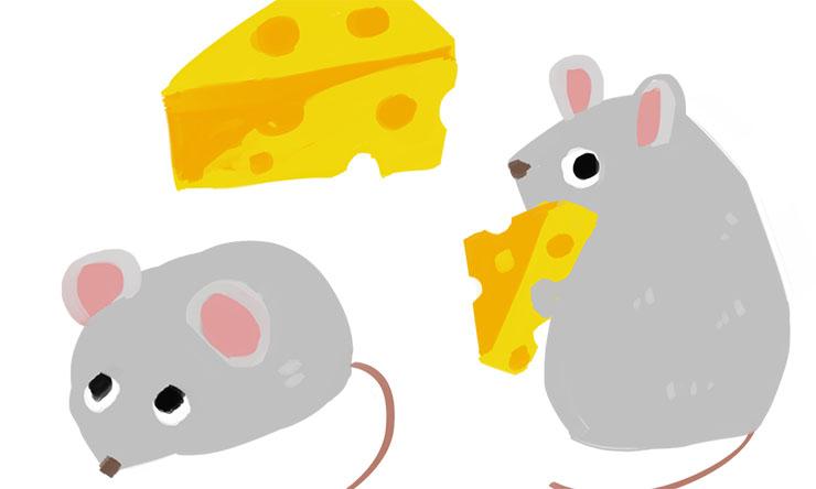 ネズミに巣を作らせないための予防法