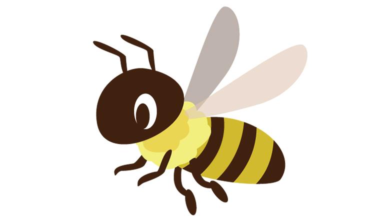 蜂に刺されてしまったときの対処法